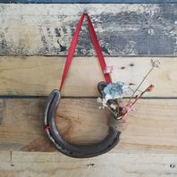 Decorative Horse Shoes